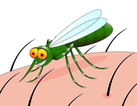 plaga: Caricatura de mosquito Vectores