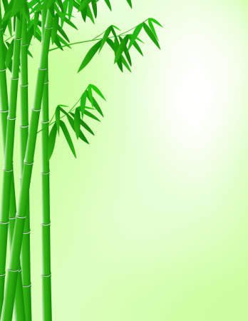 Bamboo background Stock Vector - 9508677