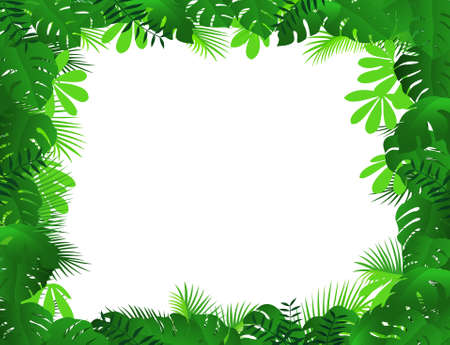 fern: forest background