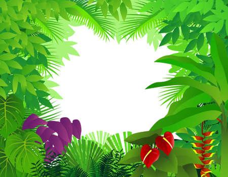 amazon rainforest: Forest background Illustration