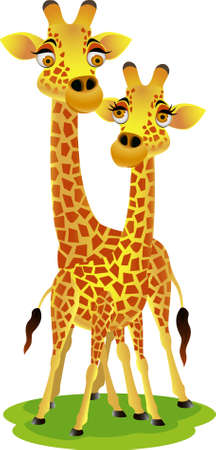 safari cartoon: Giraffe cartoon couple Illustration