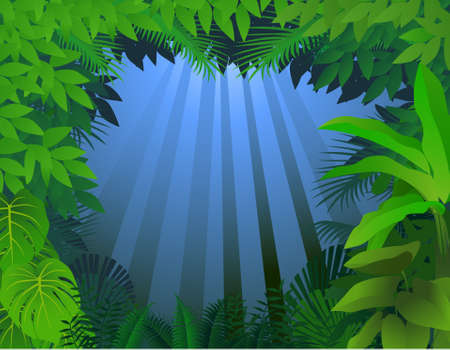 Forest background Stock Vector - 9698971