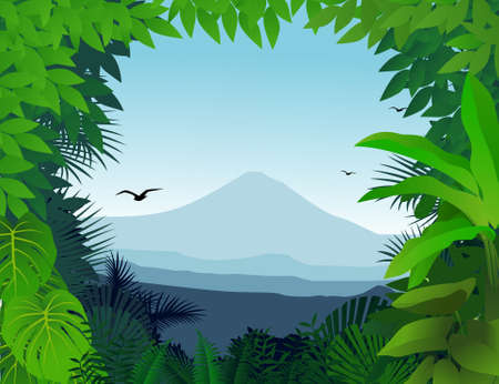 mystical forest: Nature background Illustration