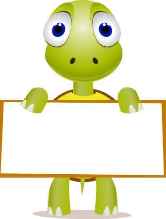 tortuga: Tortuga lindo y signo en blanco Vectores