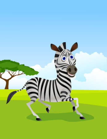 herbivore: Zebra cartoon