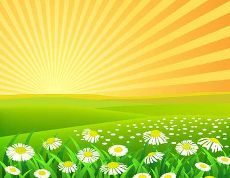 rayos de sol: Fondo de naturaleza Vectores