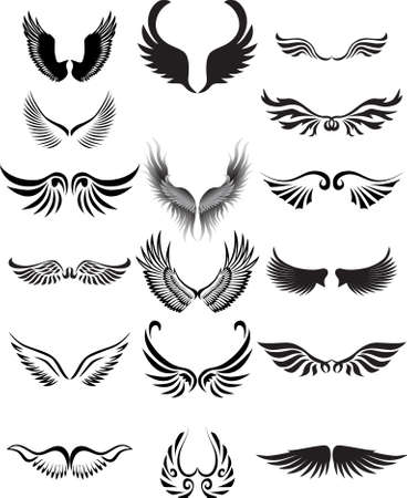 birds wings: Wings silhouette collection