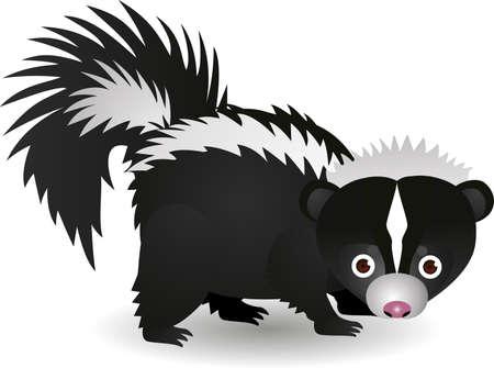 zorrillo: Cartoon Skunk