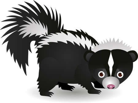 Skunk cartoon Vector