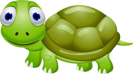 Turtle cartoon Illustration