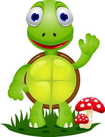 tortuga de caricatura: Dibujos animados de la tortuga Vectores