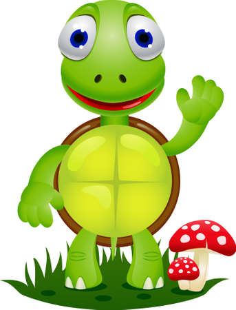 Turtle cartoon Illustration
