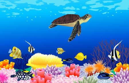 paesaggio mare: Illustrazione vettoriale della vita di mare