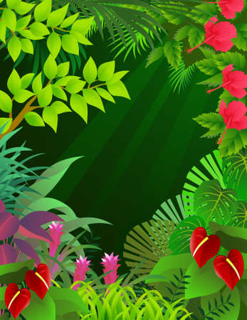 amazon forest: Tropical forest background Illustration