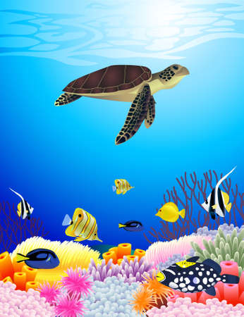 Beautiful sealife background Stock Vector - 10057291