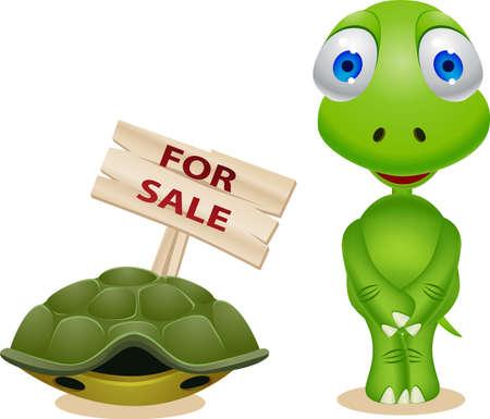 tortuga: Tortuga de vende su casa Vectores