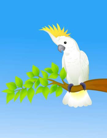 орнитология: Какаду в тропическом лесу Иллюстрация