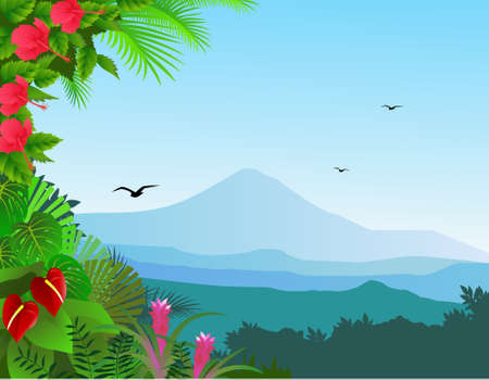 Tropical forest background Stock Vector - 10103710