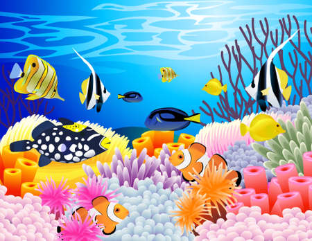 coral ocean: Sea life background