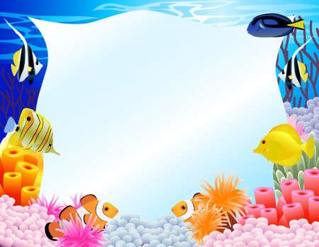 algas marinas: Fondo de la vida de mar Vectores
