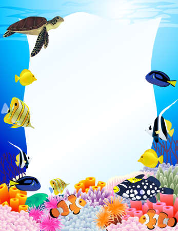 under the sea: Sea life background