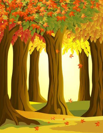 rahmen: Herbst Baum Hintergrund