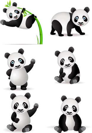 oso panda: Panda de dibujos animados Vectores