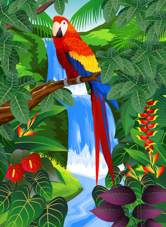 tropical rainforest: Tropical bird in the tropical forest  Illustration