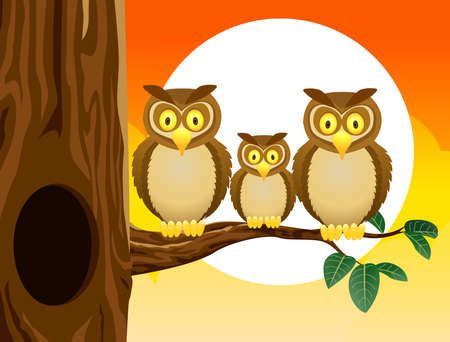 Owl family with sunset Vector