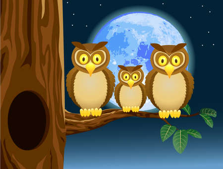 man in the moon: Owl Family