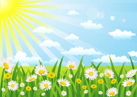 dia soleado: Naturaleza bacground