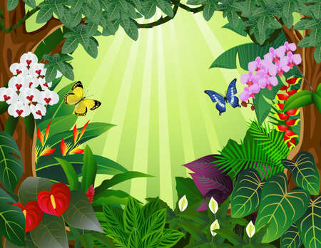 Tropical forest bacground Vector
