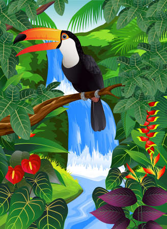 mystical forest: Toucan bird in the tropical Illustration