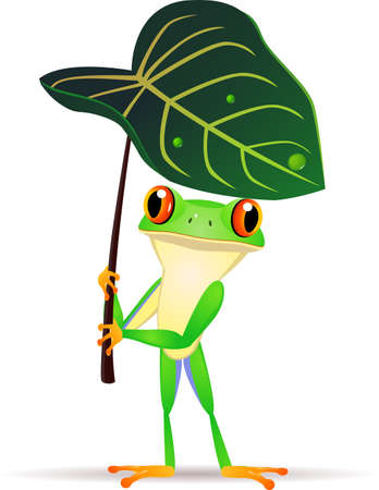 Frog with leaf Vector