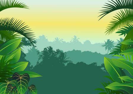 jungle Stock Vector - 12152519
