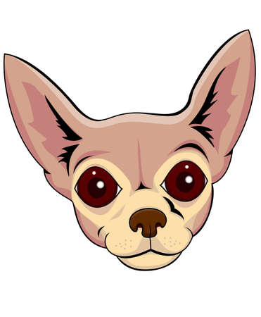 lap dog: Chihuahua cartoon Illustration