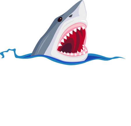 squalo bianco: Shark cartone animato