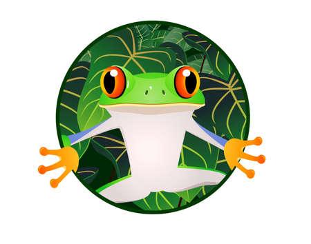 tree frogs: Frog cartoon Illustration