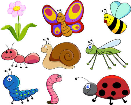 gusanos: de peque�os animales Foto de archivo