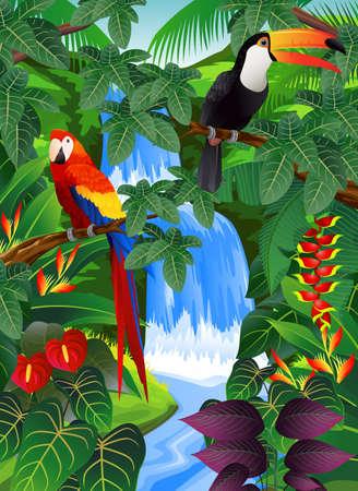 rio amazonas: De fondo de los bosques tropicales