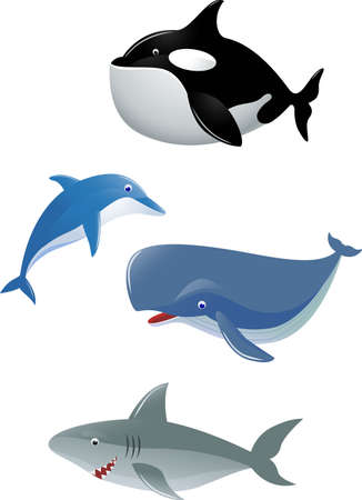 whale underwater: Sea life cartoon