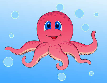 squid: Funny octopus