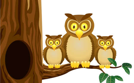 hollow: Owl Family