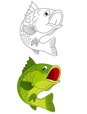 sea bass: Fish Stock Photo