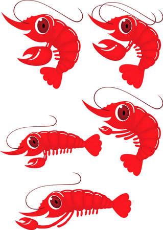 prawns: Funny shrimp cartoon  Stock Photo