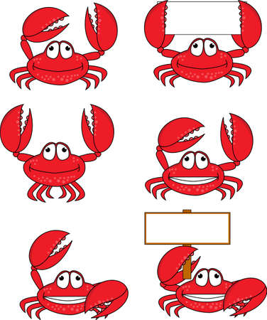 Funny crab cartoon  photo