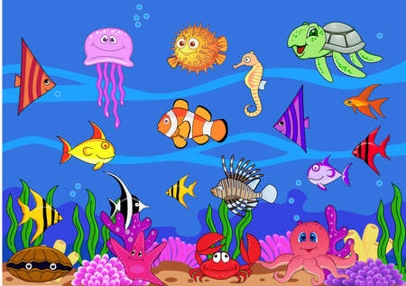 marine life: Sea life Stock Photo