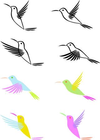 Hummingbird Stock Vector - 12152624