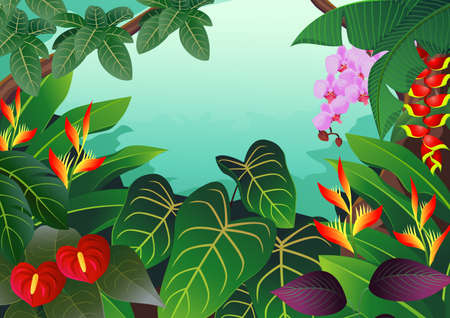 rainforest tree: Nature background Illustration