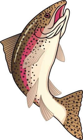 민물의: 송어 물고기 일러스트